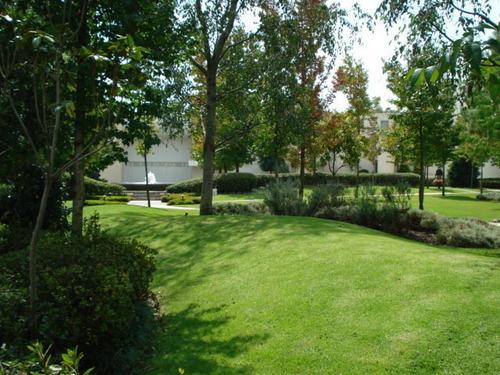 Imagen 1 de 2 de Excelente Planta Jardin En Parque Escondido