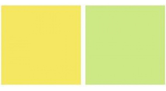 Repeteco -linha Duo Verde/amarelo - Limão