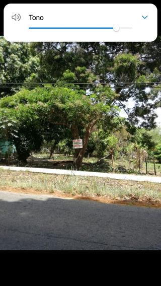 Vendo Terreno En Churriquita Penonome