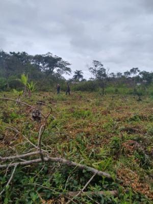 Terreno No Litoral, Em Itanhaém/sp