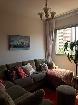 Apartamento - Ap00819 - 33778955