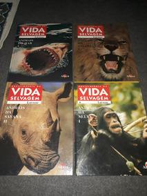4 Livros Vida Selvagem Antigo 1997 Capa Dura Ilustrado