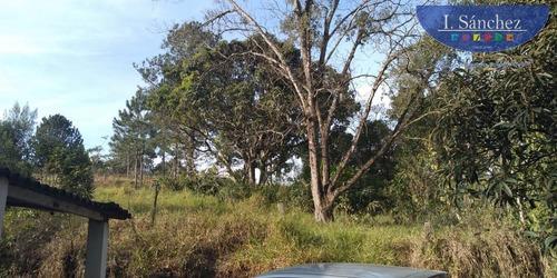Chácara Para Venda Em Itaquaquecetuba, Jardim Rio Negro, 2 Dormitórios, 1 Banheiro - 200713a_1-1494771