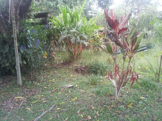 Rural Para Venda, 2 Dormitórios, Capão Bonito - Botucatu - 675
