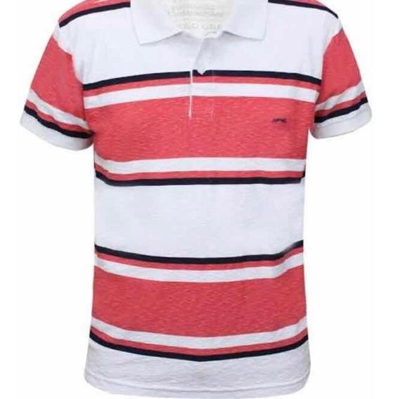 Camisas Gola Polo Alfadez Kit Com 12 Peças