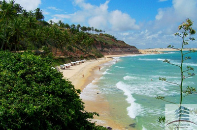 Terreno A Venda (6000m²) Beira Mar Em Tibau Do Sul