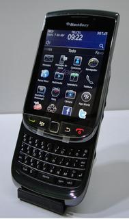 Celular Blackberry 9800 Vintage ( Debloqueado ) + Funda