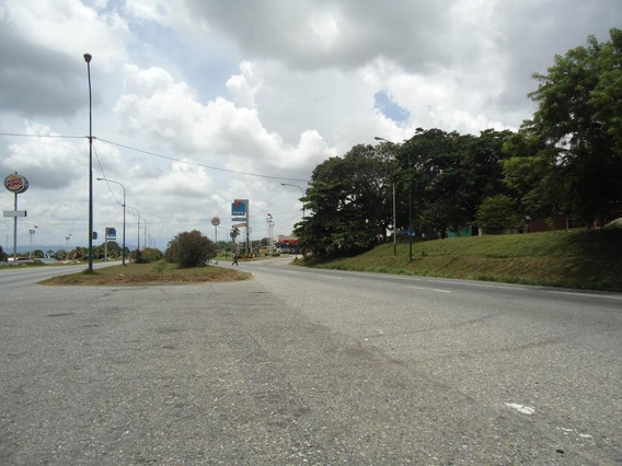 Rah: 20-2403. Terreno En Venta En Municipio Peña