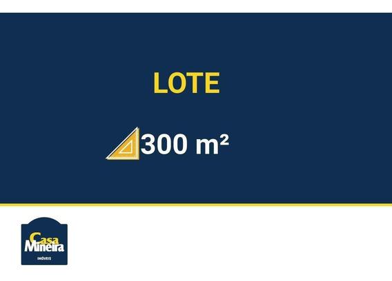 Lote À Venda No Ouro Preto - Código 261204 - 261204