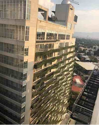 Renta Departamento En City Towers Green