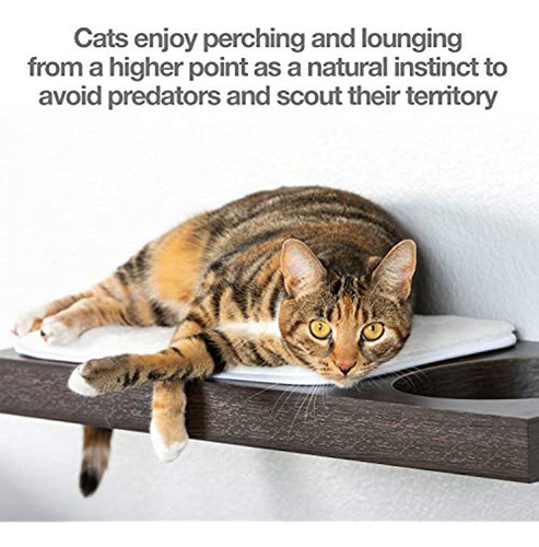 Imagen 1 de 5 de Estantes De Pared Petfusion Cat Activity (disponibles Como J