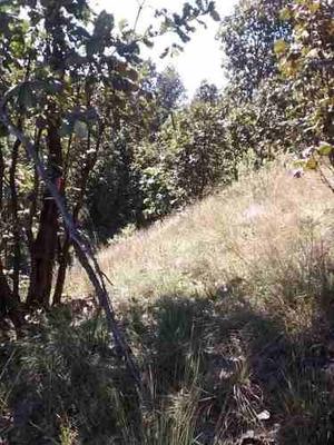 Se Vende Terreno Panorámico En Bugambilias 2da. Sección, Zapopan