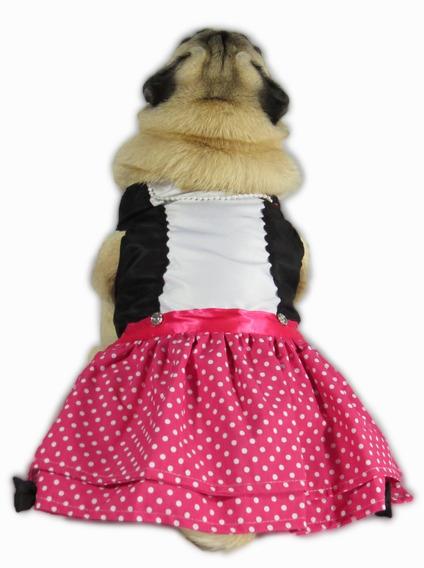 Vestido Para Cachorro Fashion Vermelho E Preto + Colar