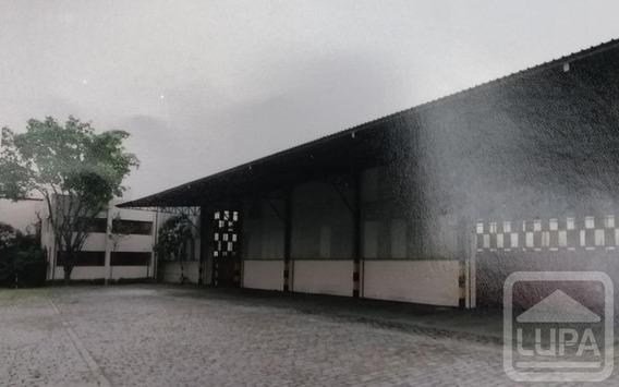 Galpão- Parque Novo Mundo - Ls16532