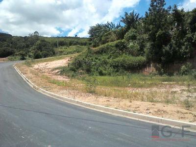 Loteamento Vila Dirce - Serra Negra - Te0386