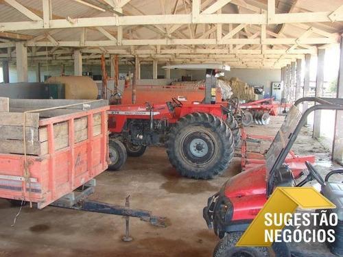 Imagem 1 de 15 de Fazenda Produtiva Região De Sorocaba Oportunidade - 2794