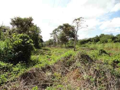 Terreno En Venta En Cutzaii, Campeche