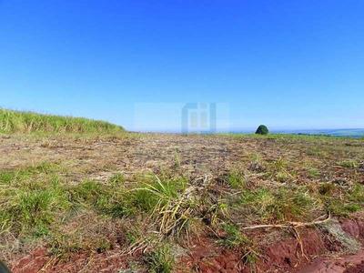 Ref: 1695 Fazenda Com 72 Alquires Na Região De São Calos -sp - 1695