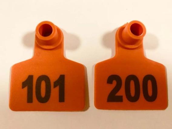 101 - 200 Aretes Borrego Ganado Enumerados Láser 100 Gratis