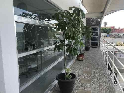 Local U Oficina Comercial En Renta En 1er Nivel Sobre Boulevard Centro Sur, Colinas Del Cimatario