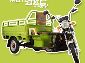 Motocarro Electrica Carguero Cargo Jec 250