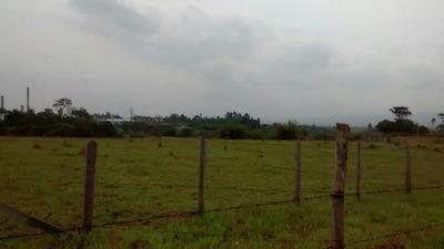 Área Em Vila Galvão, Caçapava/sp De 0m² À Venda Por R$ 6.525.000,00 - Ar236956