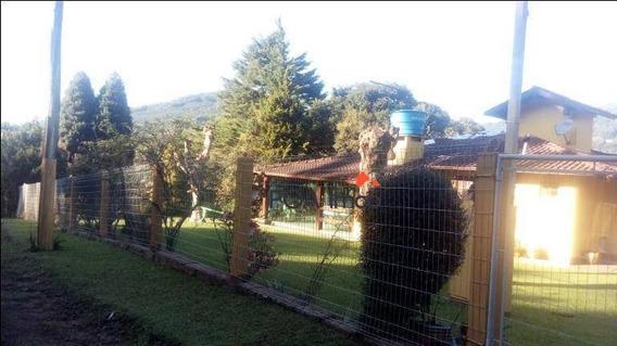 Chácara Residencial À Venda, São José Do Herval, Morro Reuter. - Ch0002