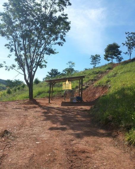 Terreno Em Pimentas - Betim - Te00286 - 68311074