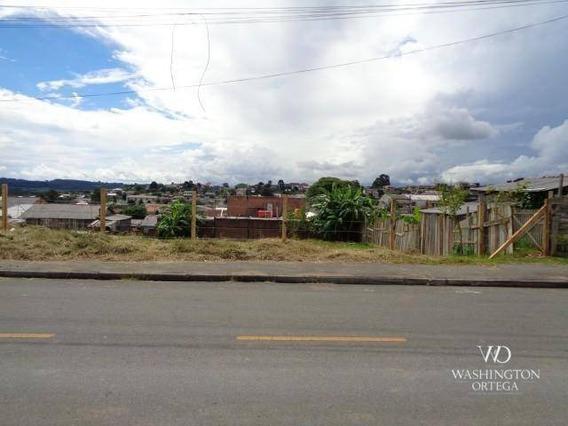 Terreno À Venda, 425 M² Por R$ 185.000,00 - Costeira - Araucária/pr - Te0159