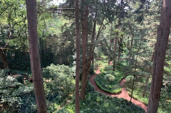 Departamento Renta Cerca Del Bosque De Tlalpan