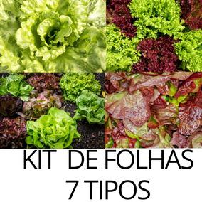 Sementes Kit Hortaliças 7 Tipos Salada Colorida +brinde