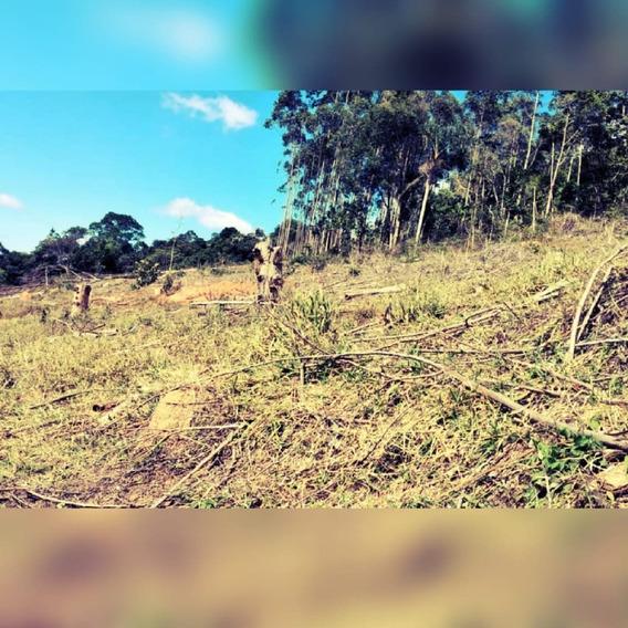 14b Vendo Terreno Com Bom Acesso!