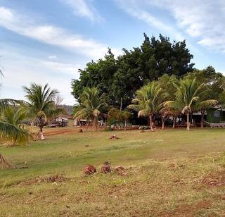 Fazenda A Venda No Bairro Bela Vista Do Paraiso Em Londrina - 307-1