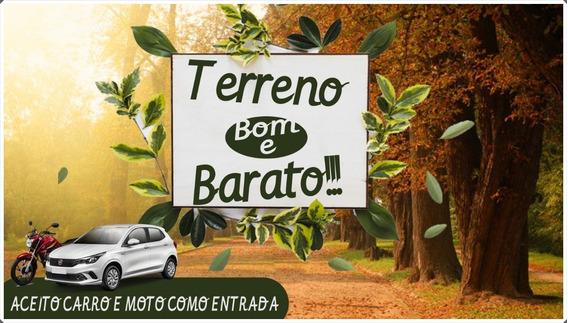U29-terrenos Em Bragança