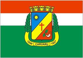 Bandeiras Municipais Estaduais E De Países Vetorizadas Cdr