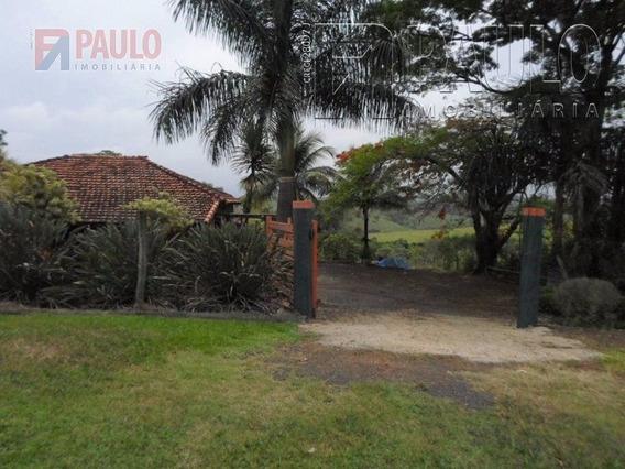 Chacara / Sitios / Fazenda - Floresta Escura - Ref: 4002 - V-4002