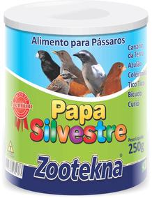 Papa Silvestre