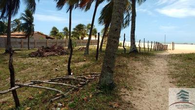 Terreno Beira Mar A Venda Em São Miguel Do Gostoso