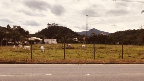 Terreno Centro Guabiruba - 127079