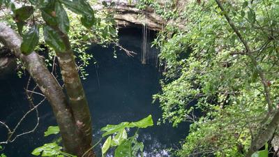 Terreno Con Cenote
