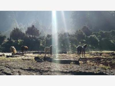 Terreno En Venta Ubicados En La Mejor Zona De Hidalgo Para Descansar O Vacacionar