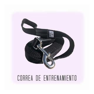 Correa De Entrenamiento Reforzada 3 Mts / Calidad Premium