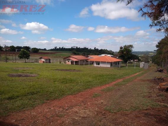 Chácaras_sítios_fazendas Para Venda - 13650.6903