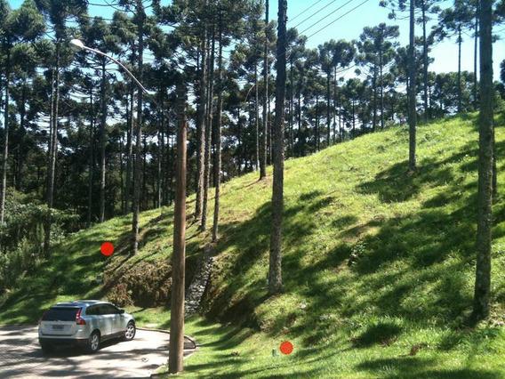 Terreno À Venda, 800 M² Por R$ 478.800,00 - Condomínio Aspen Mountain - Gramado/rs - Te0040