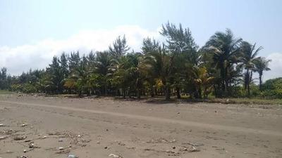 Lotes En La Playa De Jicacal Veracruz En Preventa !!