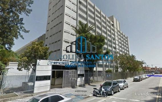 Aluga-se Lajes Comerciais No Bairro Villa Lobos - 4363