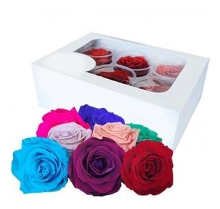 Hermosas Rosas Preservadas Eternas De Exportación