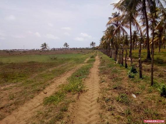 Terreno En San Juan De Los Cayos Fot-098