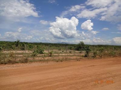 Fazenda Em Brejinho De Nazaré - To, P/ Agricultura - 436
