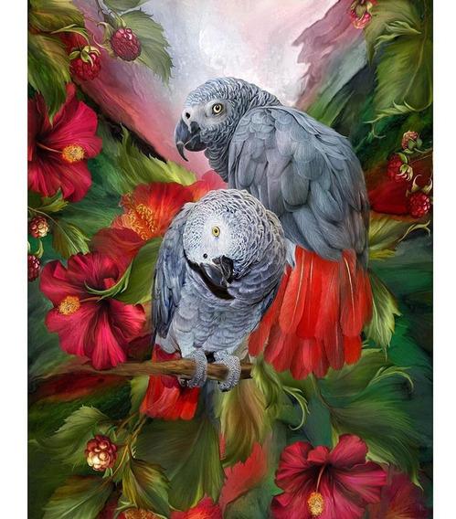 5d Diy Completa Broca De Diamante Pintura Papagaios Aves